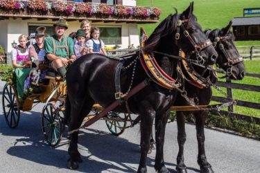 Pferdeschlittenfahrten im Sommerurlaub in Filzmoos, Salzburg